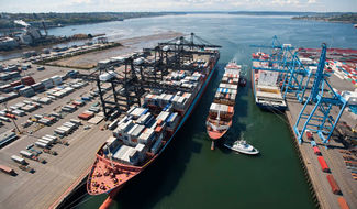 In the sometimes-congested waterways of the Pacific Northwest, Puget Sound Pilots are responsible for diverse vessels including containerships, tankers, articulated oil carriers, car carriers and cruise ships. Photo courtesy of the Puget Sound Pilots.
